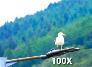 Huawei P50 Pro kamera képesség